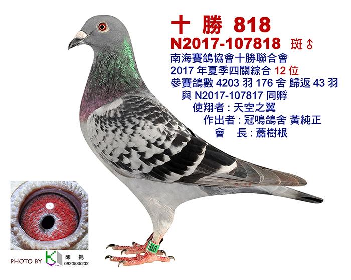 十勝2017夏-12..jpg